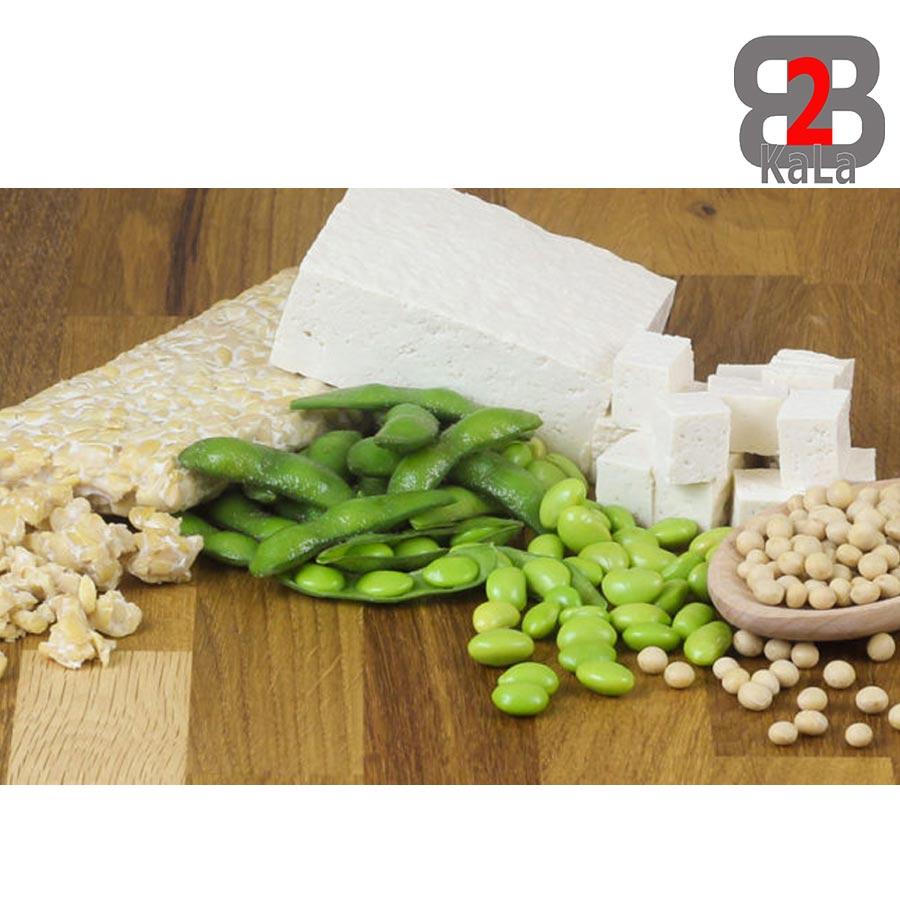 انواع پروتئین های گیاهی