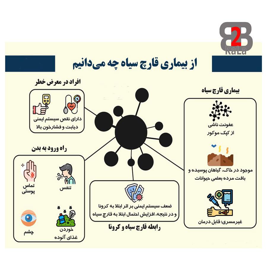 بیماری قارچ سیاه و اطلاعات مربوطه